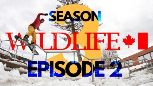 WILDLIFE Season 3 Ep.2