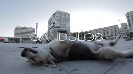 """Gandulos"" skateboard video"