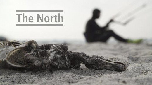 The North
