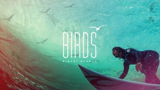 Birds – Miguel Blanco
